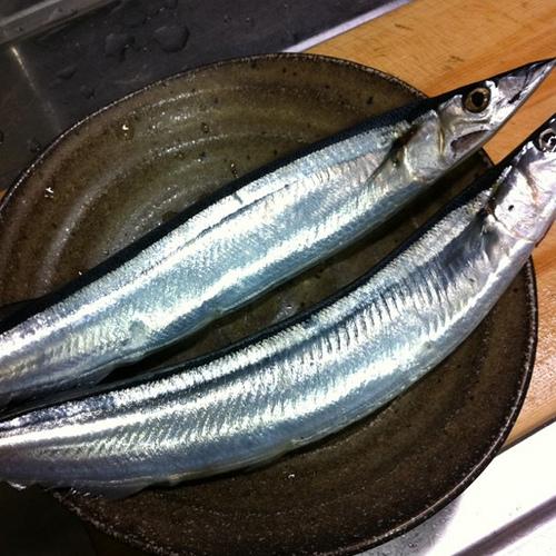 なめろうに合う魚 サンマの画像