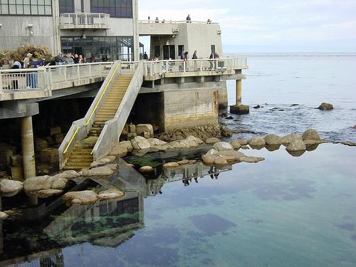 モントレーベイ水族館 外観の写真