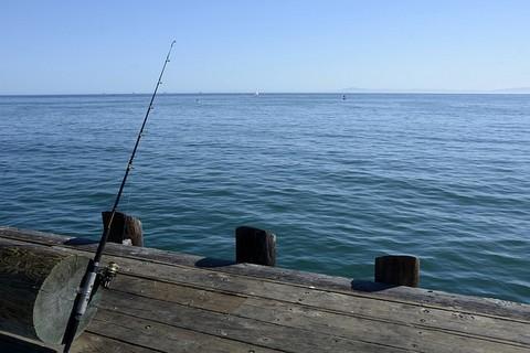 魚のあたり待ちの画像