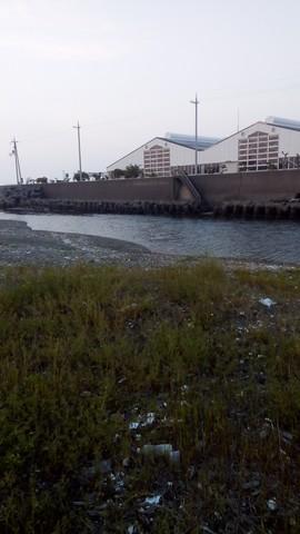 シーバスの釣り場 和歌山 谷川港周辺 東川 (3)