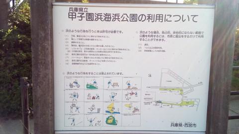 甲子園浜 説明