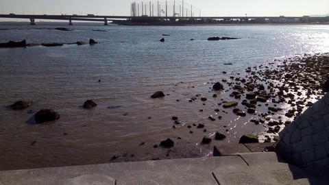 シーバスの釣り場 神戸 甲子園浜 ふるさと海岸