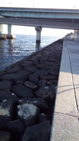 シーバスの釣り場 神戸 甲子園浜 サーファーエリア先端