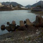シーバスの釣り場 和歌山 谷川港周辺 東川 (1)