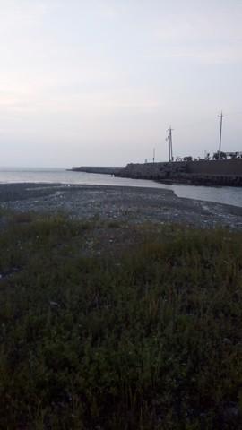 シーバスの釣り場 和歌山 谷川港周辺 東川 (4)