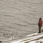 冬に釣れる魚の種類