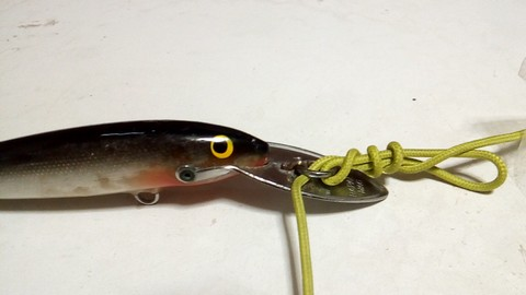 釣り糸や針の結び方 完全結び(漁師結び)の結び方 (4)