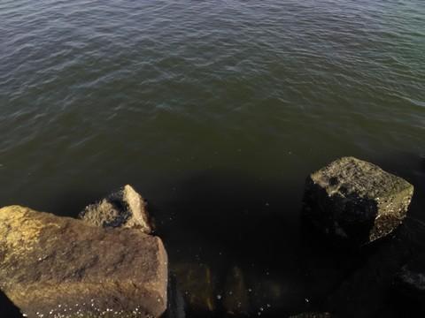 やや濁りのある釣り場