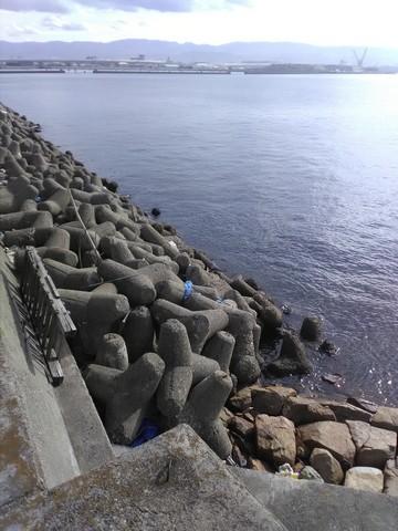 アジング・メバリング ポイント 岸和田ホクシン前  木材町側