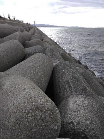 二色浜 貝塚人工島 釣り テトラ1